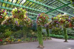 Garden with hanging baskets at Butchart Gardens.jpg