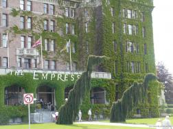 Funky dinosaur like trees in front of the Empress Hotel in Victoria.jpg