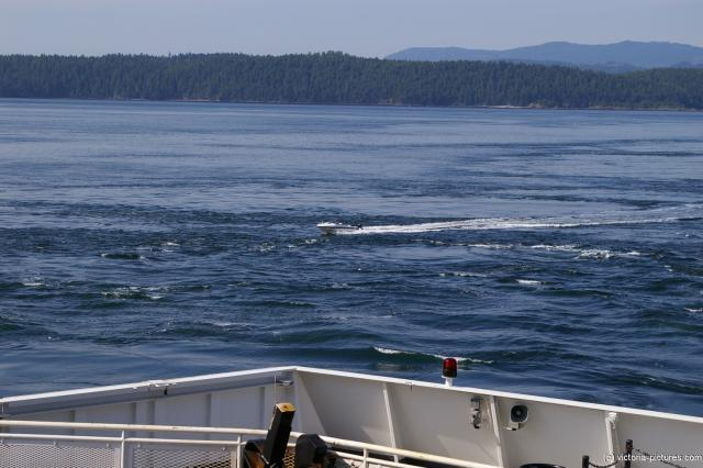 Speedboat passing across our ferry to Victoria.jpg